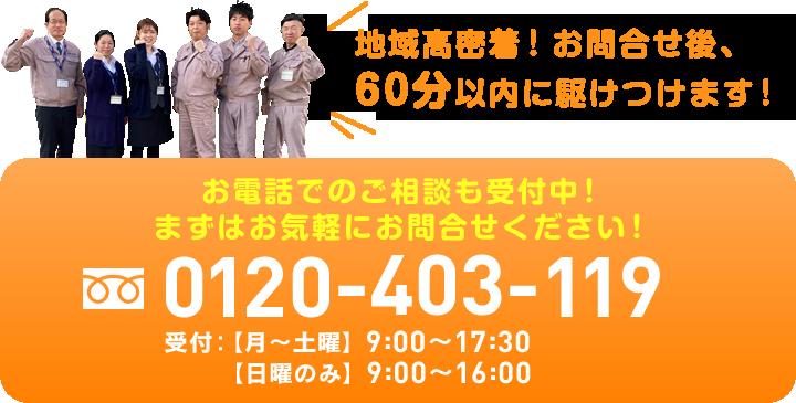0120-403-119
